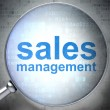 Stock Photo: Marketing concept: Sales Management with optical glass