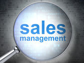Marketing concept: Sales Management with optical glass — Stock Photo