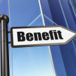 Stock Photo: Business concept: Benefit on Building background