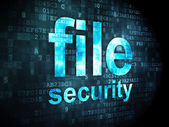 Privacy concept: File Security on digital background — Foto de Stock