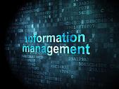 Information concept: Information Management on digital backgroun — Fotografia Stock