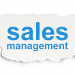 Stock Photo: Marketing concept: Sales Management on Paper background