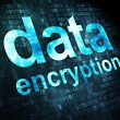 Stock Photo: Protection concept: DatEncryption on digital background