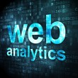 Stock Photo: SEO web development concept: Web Analytics on digital background