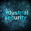 Stock Photo: Protection concept: Industrial Security on digital background