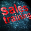 Stock Photo: Advertising concept: Sales Training on digital background