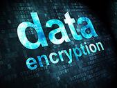 Protection concept: Data Encryption on digital background — Foto de Stock