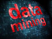 Information concept: Data Mining on digital background — Stock Photo