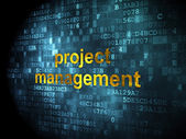 Business concept: Project Management on digital background — Photo