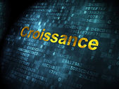 Business concept: Croissance(french) on digital background — Stockfoto