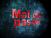 Protection concept: Mot de Passe(french) on digital background — Stockfoto