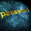 Privacy concept: Password on digital background — Stock Photo #33139641