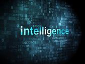Education concept: Intelligence on digital background — Foto Stock
