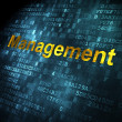 Photo: Business concept: Management on digital background