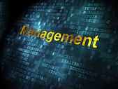 Business concept: Management on digital background — Foto de Stock