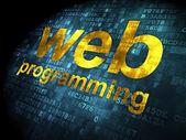 SEO web development concept: Web Programming on digital backgrou — Stok fotoğraf