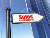 Advertising concept: Sales Management on Building background — Stockfoto