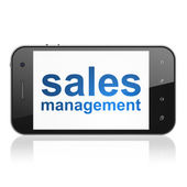 Advertising concept: Sales Management on smartphone — Stockfoto