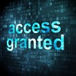 Safety concept: Access Granted on digital background — Stock Photo