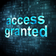 Safety concept: Access Granted on digital background — Stock Photo #33457181