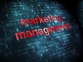 Marketing concept: Marketing Management on digital background — Zdjęcie stockowe