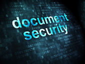 Protection concept: Document Security on digital background — Foto de Stock