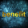 Business concept: Benefit on digital background — Stock Photo #34417595
