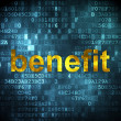 Стоковое фото: Business concept: Benefit on digital background