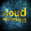Stock Photo: Cloud computing concept: Cloud Networking on digital background