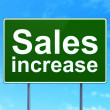 Stock Photo: Marketing concept: Sales Increase on road sign background