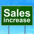 Marketing concept: Sales Increase on road sign background — Stock Photo