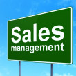 Stock Photo: Marketing concept: Sales Management on road sign background