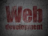 Web utvecklingskoncept: webbutveckling på grunge vägg bakgrund — Stockfoto