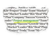 Finance concept: Project Management on Paper background — Zdjęcie stockowe