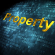 Stock Photo: Finance concept: Property on digital background