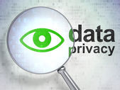 Privacy concept: Eye and Data Privacy with optical glass — Foto Stock