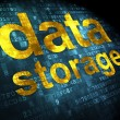 Data concept: Data Storage on digital background — Stock Photo