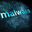 Privacy concept: Malware on digital background — Stock Photo #34831199