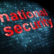 Stock Photo: Privacy concept: National Security on digital background