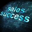 Stock Photo: Advertising concept: Sales Success on digital background