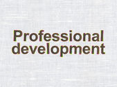 Education concept: Professional Development on fabric texture background — 图库照片