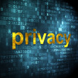 Stock Photo: Security concept: Privacy on digital background