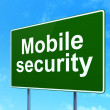 Stock Photo: Security concept: Mobile Security on road sign background
