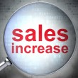 Stock Photo: Marketing concept: Sales Increase with optical glass