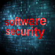 Stock Photo: Privacy concept: Software Security on digital background