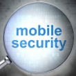 Stock Photo: Privacy concept: Mobile Security with optical glass
