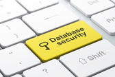 Security concept: Key and Database Security on computer keyboard background — Stockfoto