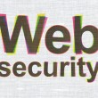 Stock Photo: Safety concept: Web Security on fabric texture background