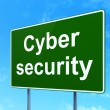 Safety concept: Cyber Security on road sign background — Stock Photo