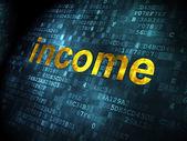 Business concept: Income on digital background — ストック写真